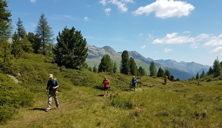 Hiking in a group - a great holiday for solo travellers