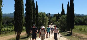 Hiking through Tuscan vineyards