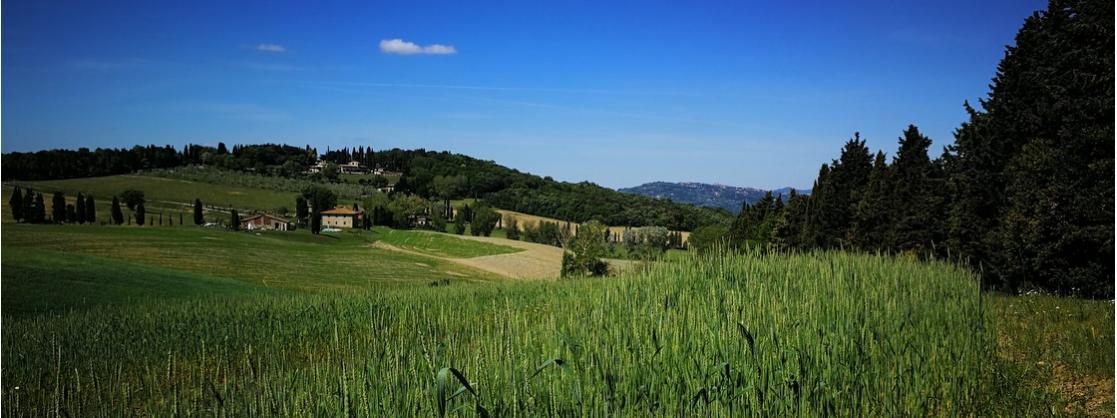 Tuscan landscape in spring
